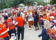Auburn tiger walk