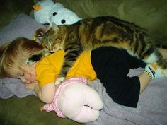 My cats still sleep like this with me!  Some of my happiest memories revolve around my cats, books, naps & rainy days.