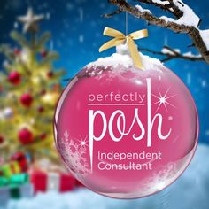 Find all your holiday gifts in Scentsy! Perfectly Posh, Christmas Candles, Christmas Bulbs, Scented Wax Warmer, Scentsy Independent Consultant, Wax Warmers, Christmas 2015, Merry Christmas, Fragrance