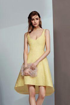 Womens primrose gracina jacquard dress from Coast - £95 at ClothingByColour.com