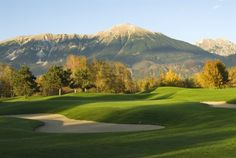 How could Golf Course Bled become more competitive?