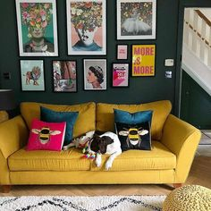 Sally aka @gettingstuffdoneinheels is smashing the gallery wall goals! Love seeing our charity Check Your Self Girl print up here!   A spaniel sitting on a yellow sofa in front of a dark grey wall full of bright prints.  In front of the sofa is a cream shaggy rug and a yellow crocheted round foot stool Hallway Wall Decor, Wall Art Decor, Monochrome Interior, Yellow Sofa, Shaggy Rug, Gallery Walls, Nursery Room Decor, Modern Art Prints, Living Room Art