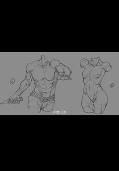 Figure Drawing Reference, Art Reference Poses, Anatomy Reference, Anatomy Sketches, Drawing Sketches, Drawings, Human Anatomy Drawing, Anatomy Art, Art Poses