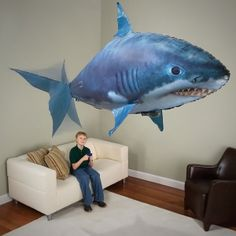 Okay This Site has some cool stuff I check it atleast one a week --Air Swimmer Remote Control Inflatable Flying Shark and Clownfish   The Store