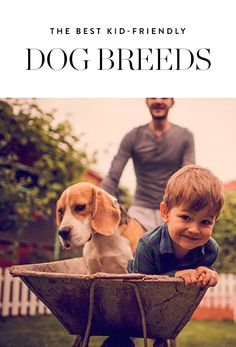 The Very Best Kid-Friendly Dog Breeds for Your Growing Family via @PureWow via @PureWow