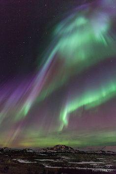 Under the light | Flickr - Photo Sharing!