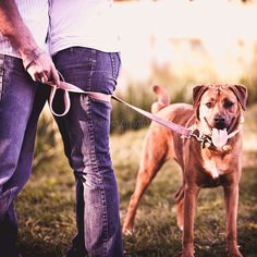wrap the leash around the googly-eyed couple a few times... get dogs attention with treat...idea for engagement pic