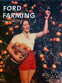Fruit picking at Ford Farming - Summer 1951 Fruit Picking, Orange Grove, Weird And Wonderful, Fruit Salad, Crate, Farming, Summer Time, Ford