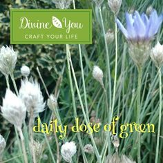This daily dose of green has been brought to you by Ann & Karen of Divine You Crafts. Follow the link in our bio and sign up to receive a FREE Mindful Art and Conscious Craft Practice Guide from Divine You Crafts.