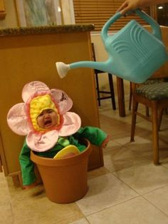 お花にお水01