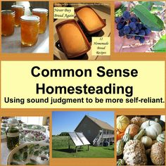 Home - Common Sense Homesteading - recipes, resources, gardening guides, etc.