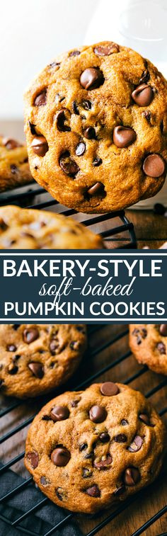 Super big, chewy and soft, muffin-top like pumpkin chocolate-chip cookies that…