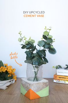 Put those soda plastic bottles to good use by recycling them to create this trendy concrete planter for your home.