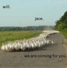 Ahahaha Will and Jace Herondale.  Mortal instruments.  City of bones.  The infernal devices