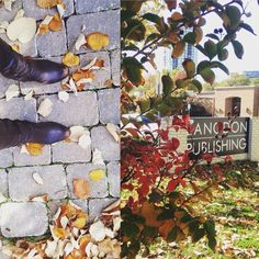 It feels like fall at Langdon Publishing. #autumnleaves #crispfallair #blueskies #fallvibes #bootseason #tulsa #oklahoma