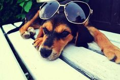 relaxing ...summer ... and don´t worry