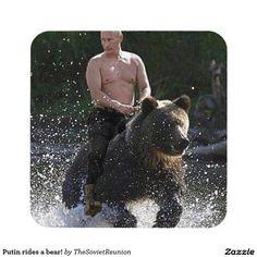 Russian President Vladimir Putin fucks a bear to 'prove dominance' over David Cameron Black Bear, Brown Bear, Putin Badass, Bear Drink, Cute Quotes For Instagram, Polar Bear, Cute Pictures, Vladimir Putin Hot, West Virginia