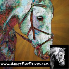 Andy's Paw Prints creates one of a kind custom artistic prints of your pet from your picture. With every custom portrait we donate 25% of our profits to help homeless, abused, abandoned and ill animals. We are supporting many shelters in the US and Internationally. AndysPawPrints.com