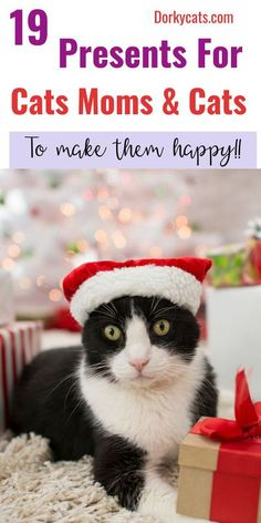 Cats gifts for christmans, cats gifts ideas for people, cats gift ideas for men, cats gift ideas for people, cats gift ideas, surprise cats gift ideas, baskets cats gifts ideas #christmas #christmaspresent #catsgiftideas #catsmome #subscriptionboxforcats Cat Lover Gifts, Cat Gifts, Cat Lovers, All Cat Breeds, Cat Presents, Cat Hacks, Fancy Cats, Cat Accessories, Cat People