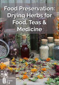 Your Guide to: Harvesting and drying leaves Harvesting herbal seeds and Harvesting roots for medicine. Your Guide to: Harvesting and drying leaves Harvesting herbal seeds and Harvesting roots for medicine. Herb Garden Design, Diy Herb Garden, Herbs Garden, Herb Gardening, Fruit Garden, Garden Pests, Garden Ideas, Container Gardening, Natural Health Remedies