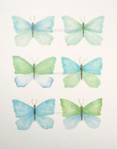 turquoise and green butterflies