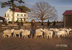 Moss Mountain Farm: An Arkansas holiday home