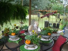 Pumpkins, flowers, and a chicken...(from Cherry Hill Cottage)