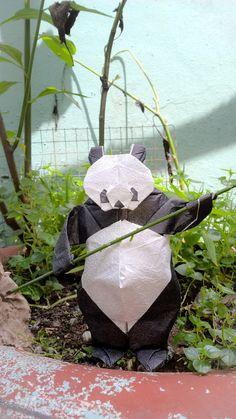 Ueno Panda - Quentin Trollip by n.tuantai@ymail.com