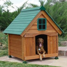 dog house with brown wall and green roof , - Dog Kennel Wood Dog House, Dog House Bed, Dog Bed, Dog Mansion, Luxury Dog Kennels, Dog House For Sale, Dog Rooms, Brown Walls, Outdoor Dog