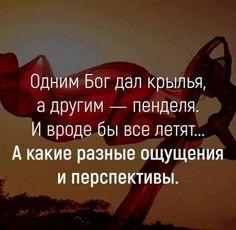 Philosophy, Poems, Lol, Thoughts, Motivation, Funny, Quotes, Frases, C'est La Vie