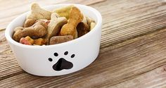 3+Grain-Free+Dog+Treat+Recipes+Your+Dog+Will+Love