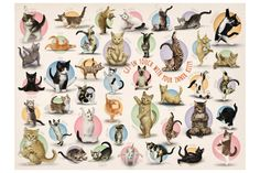 We have a huge selection of puzzles that include your favorite feline friends. Sit back and relax with a cute kitten puzzle and his adorable friends! Fluffy Kittens, Cats And Kittens, Three Witches, Cat Work, Types Of Cats, Cat Shelves, Dancing Cat, Pets For Sale, Christmas Cats