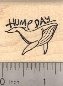 Cute whale design
