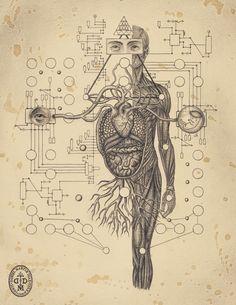 Soul of Science by Daniel Martin Diaz 1