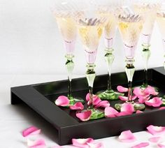 black trays filed with pink petals