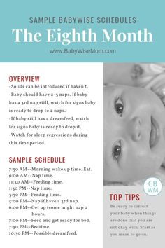 Babywise Sample Schedules: The Eighth Month Sample schedules for a 7 month old using the Babywise method. This is the month of life. Baby schedules for weeks old. Babywise Sample Schedules: The Eighth Month 7 Month Old Schedule, Baby Food Schedule, Newborn Schedule, Baby Sleep Schedule, Kids Schedule, Baby Boy, Get Baby, Baby Momma, 7 Month Olds