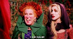 """It also taught us proper anger management skills: 21 Reasons Why """"Hocus Pocus"""" Is The Best And Most Important Part Of Halloween Hocus Pocus Gif, Hocus Pocus Quotes, Hocus Pocus Movie, Hocus Pocus Witches, Halloween Desserts, Halloween Decorations, Hocus Pocus Drinking Game, Drinking Games, Best Halloween Movies"""