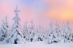 #landscape #winter #view #picture #wallpaper #tapetynapulpit #widok #zdjecie #krajobraz #zima