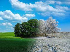 'Spring+meets+winter'+von+brava64+bei+artflakes.com+als+Poster+oder+Kunstdruck+$20.79