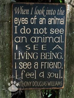 When I look into the eyes of an animal I do not see an animal. I see a living being. I see a friend. I feel a soul. - Anthony Douglas Williams