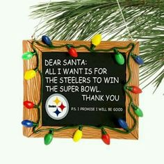 Steelers Nation Unite
