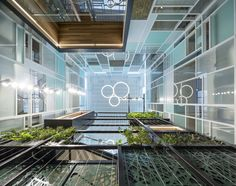 """William Ross Architects' biophilic design for the City of Stonnington brings the outside in with a 3-story high """"green wall."""""""