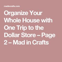 Organize Your Whole House with One Trip to the Dollar Store – Page 2 – Mad in Crafts