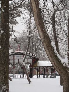 Tower Grove Park