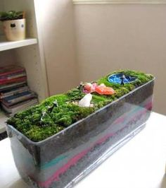 maybe this will help with our moss?