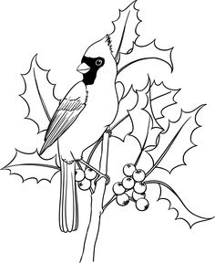 Beccy's Place: cardinal LOTS of digital stamps Bird Embroidery, Embroidery Patterns, Christmas Colors, Christmas Art, Colouring Pages, Coloring Books, Wood Burning Patterns, Bird Drawings, Copics