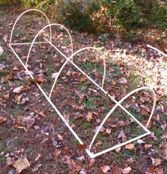PVC cold frame.  - i actually used hoola hoops cut in half and poked them into the ground ~ same idea - great results