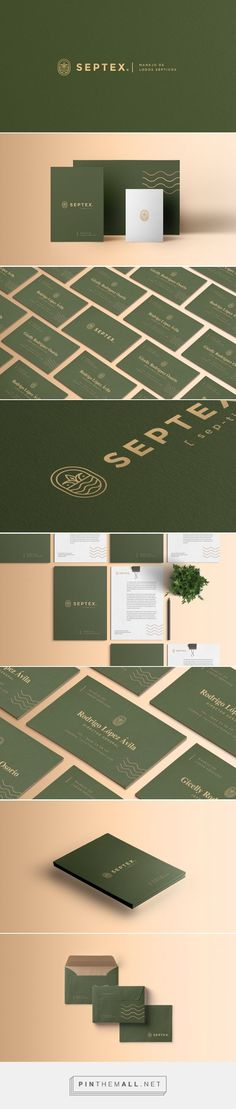 SEPTEX Septic Management Company Branding by Aarón Rivero | Fivestar Branding Agency – Design and Branding Agency & Curated Inspiration Gallery #branding #brand #identity #design #designinspiration