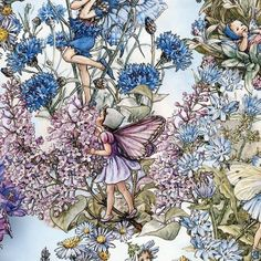 FLOWER FAIRY Cicely Mary Barker Periwinkle Fabric 1/2 yard