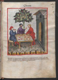 Folio 99r (page 201). Tacuinum sanitatis, Codex Vindobonensis, series nova 2644. North Italy, probably Verona, 1380-1399.